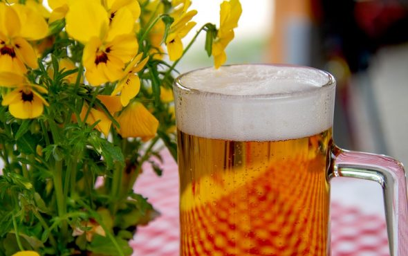 Separate Myths from Facts: Are You Aware of These 5 Beer Myths?
